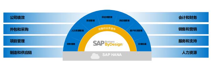 SAP BYD